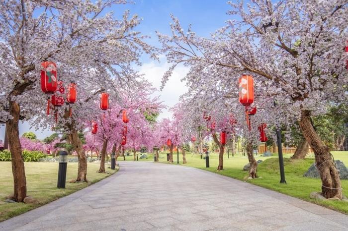 Những góc sống ảo chất ngất tại Công viên Nhật Bản đầu tiên tại Hà Nội ảnh 1