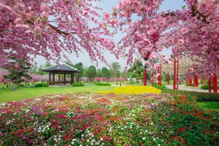 Những góc sống ảo chất ngất tại Công viên Nhật Bản đầu tiên tại Hà Nội ảnh 2