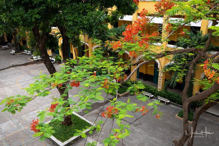 Vẻ đẹp nhuốm màu thời gian của ngôi trường THPT với kiến trúc Pháp đẹp nhất Sài Gòn ảnh 19