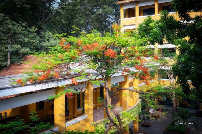 Vẻ đẹp nhuốm màu thời gian của ngôi trường THPT với kiến trúc Pháp đẹp nhất Sài Gòn ảnh 23