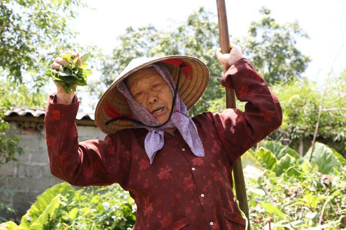 Cụ bà gần 90 tuổi vẫn phăng phăng đi cấy, trồng rau khiến giới trẻ xách dép' đuổi theo: 'Các cháu chưa chắc đã bằng tôi, còn khoẻ tôi còn làm' Ảnh 5