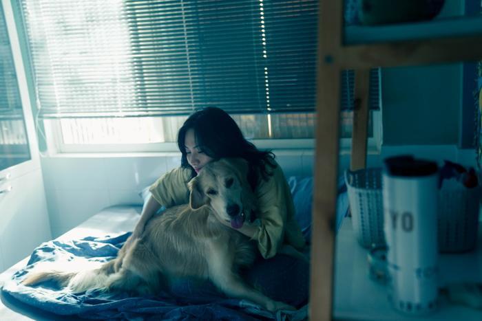 'Bằng chứng vô hình': Liệu có thoát khỏi bóng dáng của một phim remake? Ảnh 4