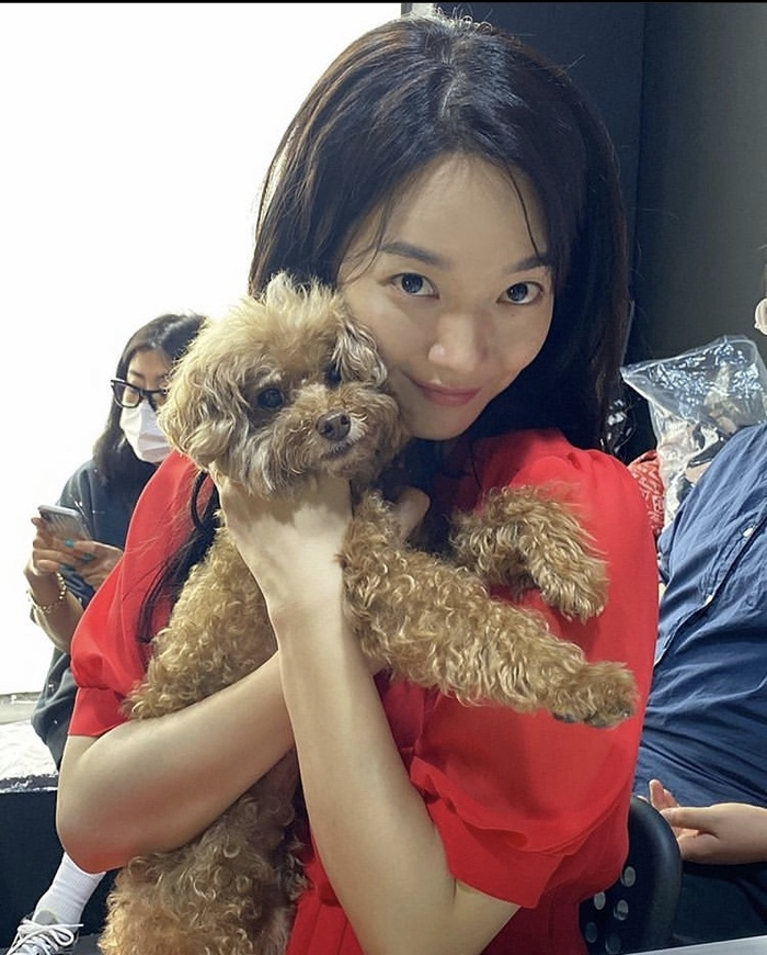 Shin Min Ah đăng ảnh gia đình, Kim Woo Bin ở đâu trong bức ảnh: Sắp kết hôn? Ảnh 5