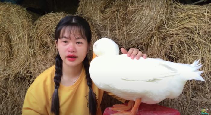Cô bé YouTuber Sâu TiVi khóc nức nở khi rời xa chú vịt cưng để đi học, dân mạng bùi ngùi xúc động Ảnh 4