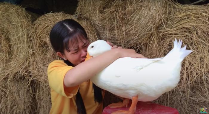 Cô bé YouTuber Sâu TiVi khóc nức nở khi rời xa chú vịt cưng để đi học, dân mạng bùi ngùi xúc động Ảnh 3