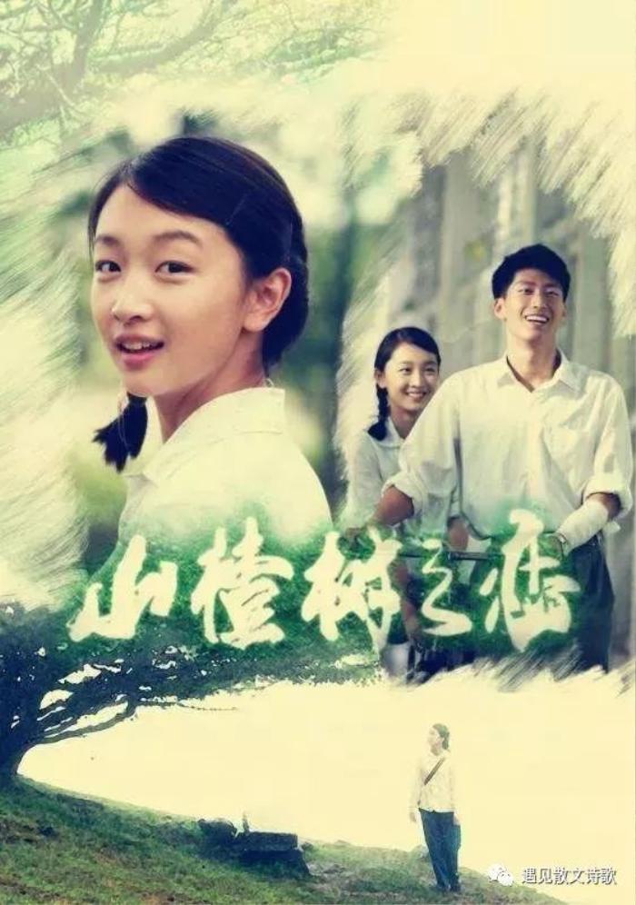Châu Đông Vũ ra mắt được 10 năm: Người hâm mộ và cư dân mạng bày tỏ yêu thích diễn xuất tinh thâm của cô Ảnh 8