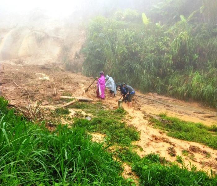 Sạt lở đất sau bão số 5 vùi lấp đàn trâu 8 con ở Nghệ An Ảnh 1