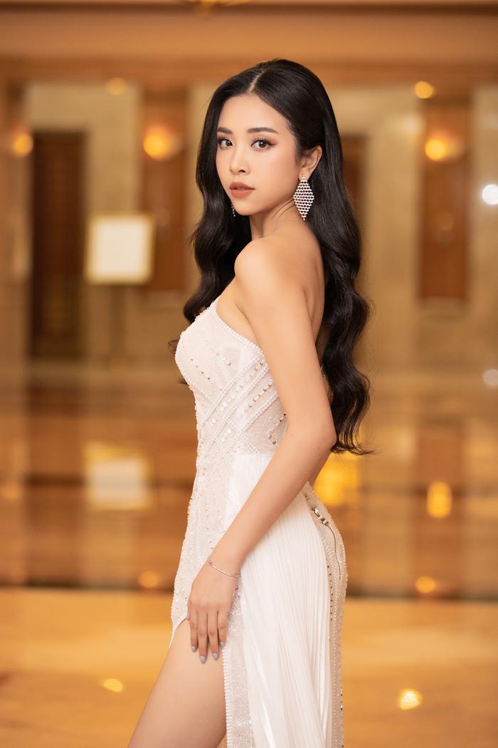 Tiểu Vy - Phương Nga - Thúy An rạng rỡ thu hút mọi ánh nhìn, tự hào nhìn lại 2 năm nhiệm kỳ Hoa hậu Việt Nam Ảnh 3