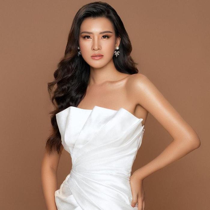 HOT: Lộ diện đại diện Việt Nam tại Miss Earth thi Online, từng 'đụng độ' H'Hen Niê - Hoàng Thùy Ảnh 2