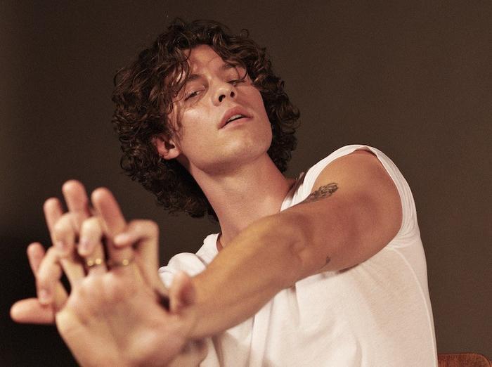 Shawn Mendes thay ava đồng loạt, nhá hàng intro làm bấn loạn fan: Album mới đã sẵn sàng? Ảnh 1