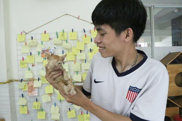 Chàng trai 24 tuổi bỏ công việc thu nhập ổn định cứu những chú mèo bất hạnh, xuất hiện trên hãng thông tấn AFP Ảnh 4