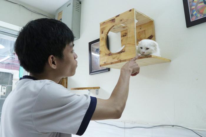 Chàng trai 24 tuổi bỏ công việc thu nhập ổn định cứu những chú mèo bất hạnh, xuất hiện trên hãng thông tấn AFP Ảnh 7