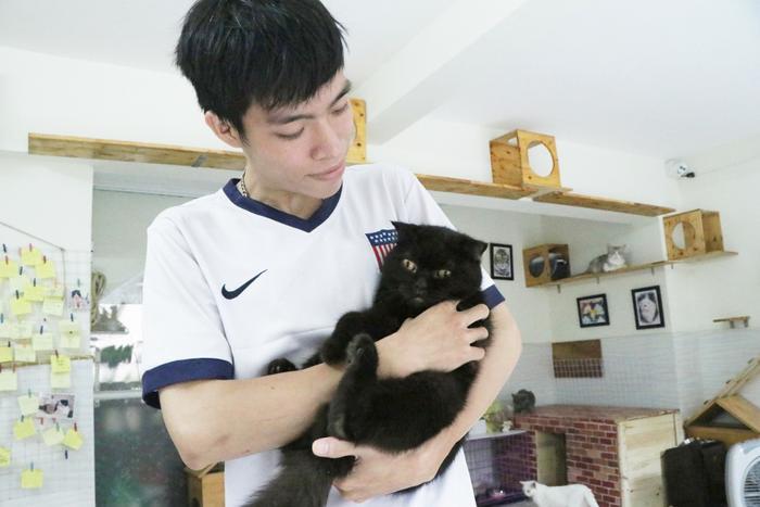 Chàng trai 24 tuổi bỏ công việc thu nhập ổn định cứu những chú mèo bất hạnh, xuất hiện trên hãng thông tấn AFP Ảnh 5