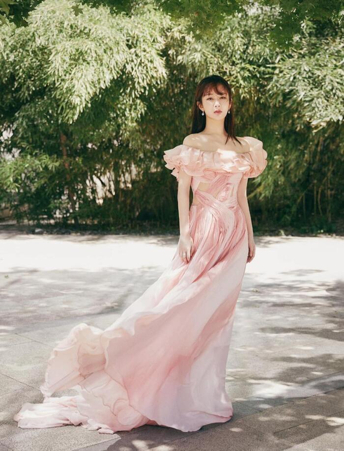 Dương Tử nhiều lần diện váy kém xinh, lộ khuyết điểm hình thể tại các sự kiện trang trọng Ảnh 14