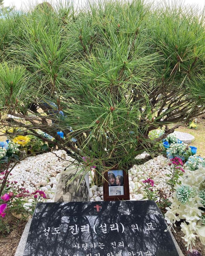 Sao Hàn đến viếng mộ Sulli trong ngày giỗ đầu: 'Xin lỗi vì đã khóc!' Ảnh 6
