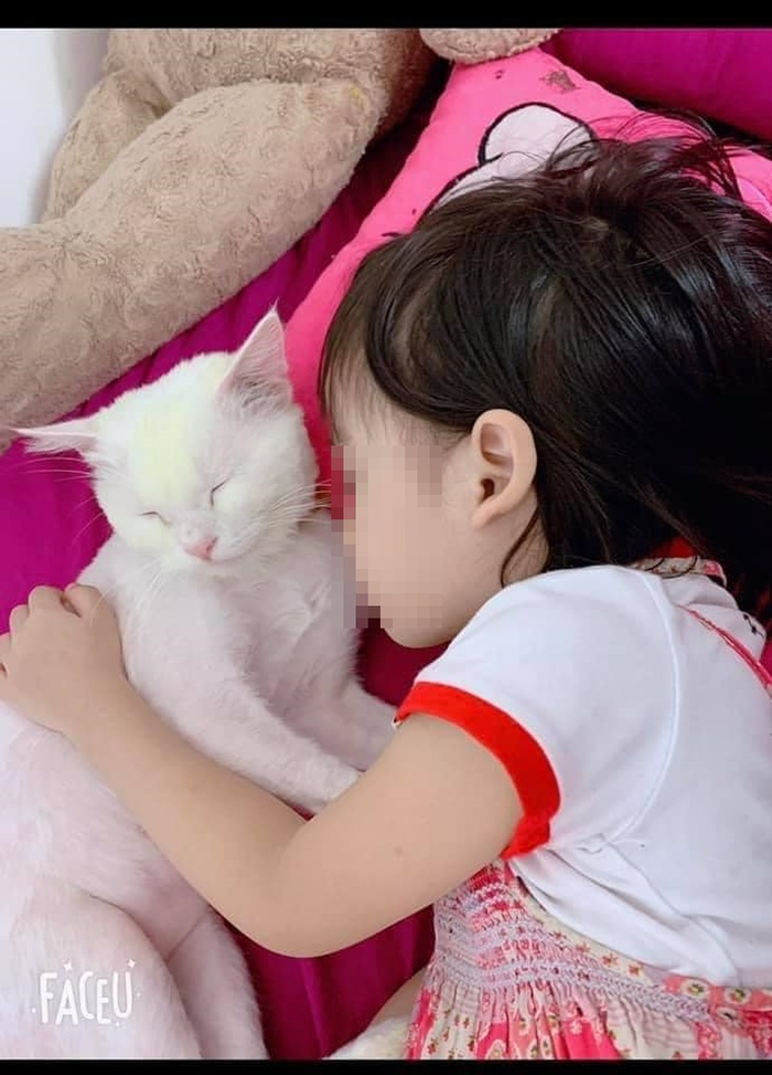 Bé gái 5 tuổi tử vong thương tâm do học theo trò treo cổ trên YouTube khiến nhiều người bàng hoàng Ảnh 2