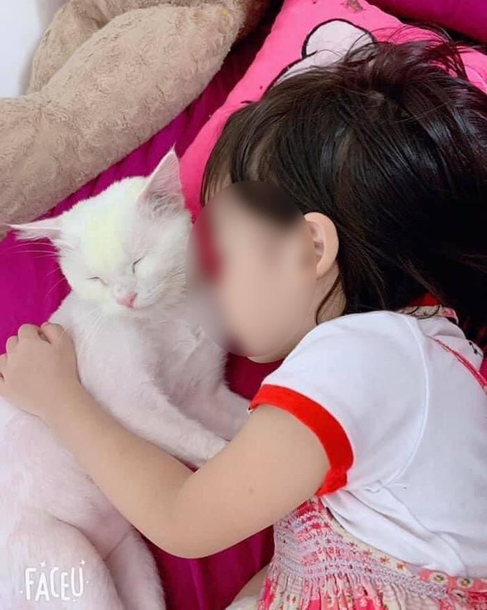 Bé gái 5 tuổi tử vong do học theo video treo cổ và loạt trào lưu độc hại nhắm đến người dùng trên Internet Ảnh 2