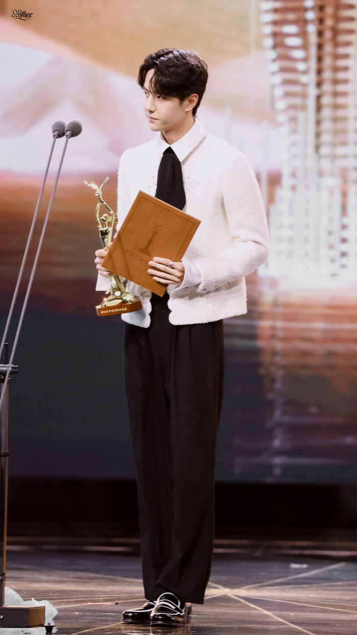 Toàn cảnh 'Kim Ưng 2020': Triệu Lệ Dĩnh - Vương Nhất Bác thắng giải, Tống Thiến 'tỏa' thái độ trề môi và màn tấu hài của Lý Dịch Phong Ảnh 16
