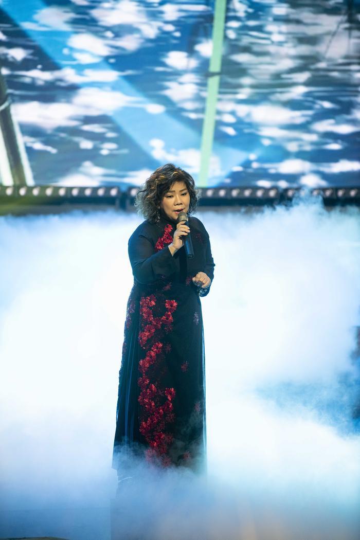 Đêm nhạc ủng hộ miền Trung do Đinh Hiền Anh tổ chức góp gần 34,2 tỷ đồng Ảnh 5
