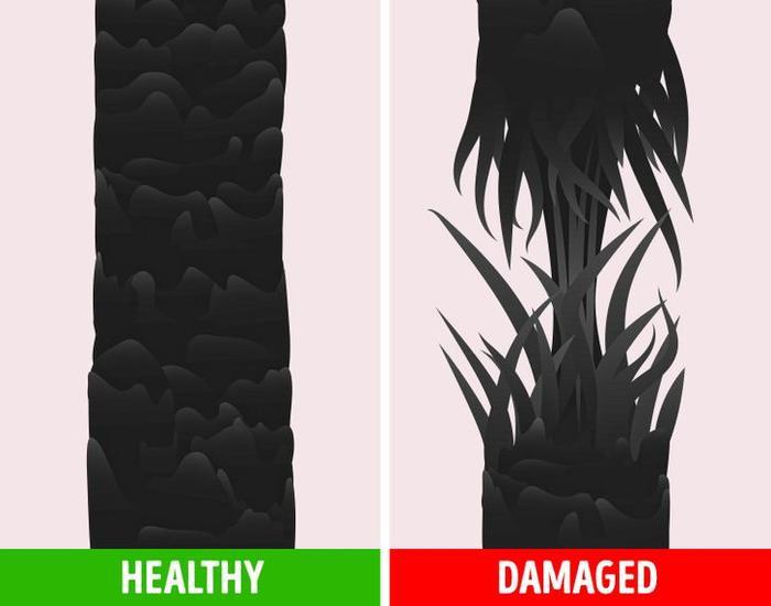 4 cách giúp bạn dễ dàng kiểm tra sức khỏe của tóc trong mùa hanh khô Ảnh 3