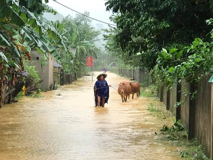 Hà Tĩnh lệnh sơ tán khẩn cả nghìn người dân khỏi vùng ngập lụt, sạt lở Ảnh 2
