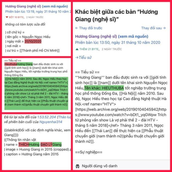 Antifan đùa không hề vui, thêm cả ngày mất của Hương Giang trên Wikipedia Ảnh 4