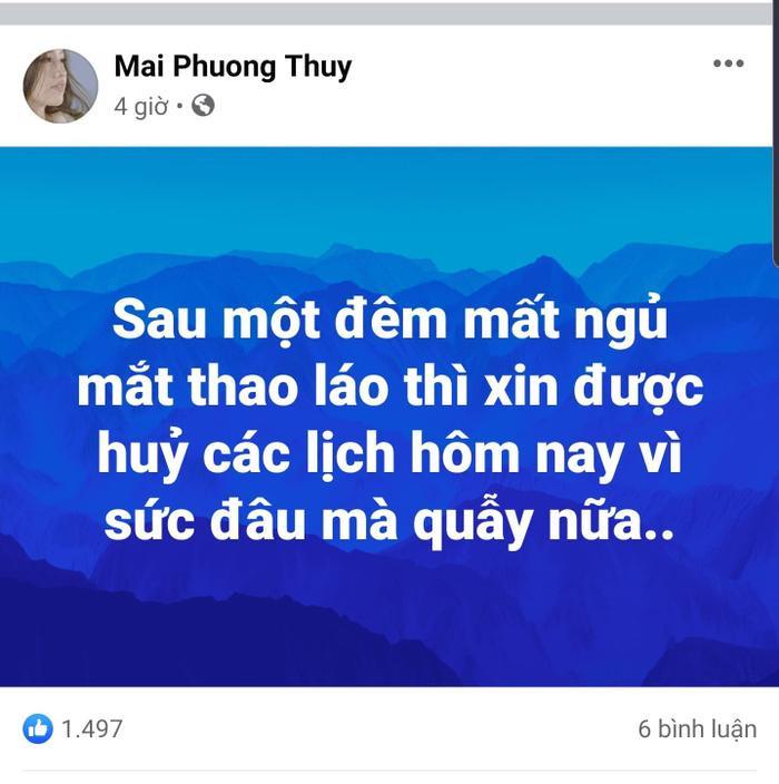Mai Phương Thúy diện đồ hở bạo gặp gia đình Noo Phước Thịnh, fan chỉ biết 'câm nín' Ảnh 7