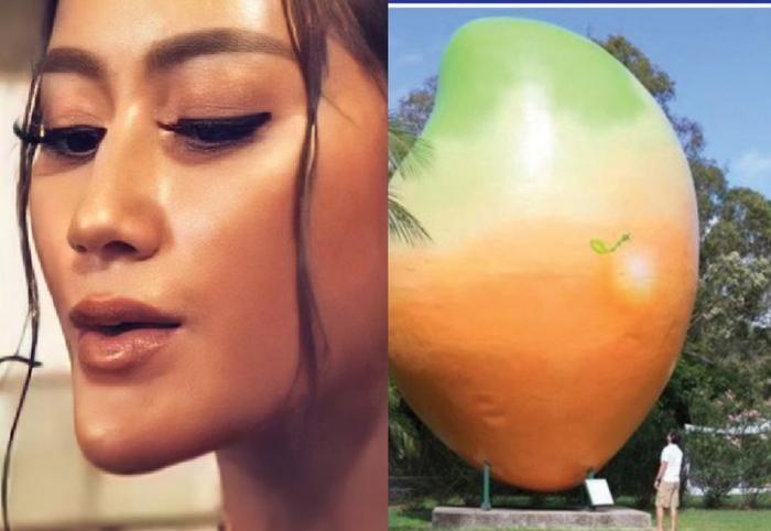 Đối thủ Khánh Vân bị nghi kéo cằm, gọt xương quai hàm, nhuộm da để chinh chiến Miss Universe 2020 Ảnh 4