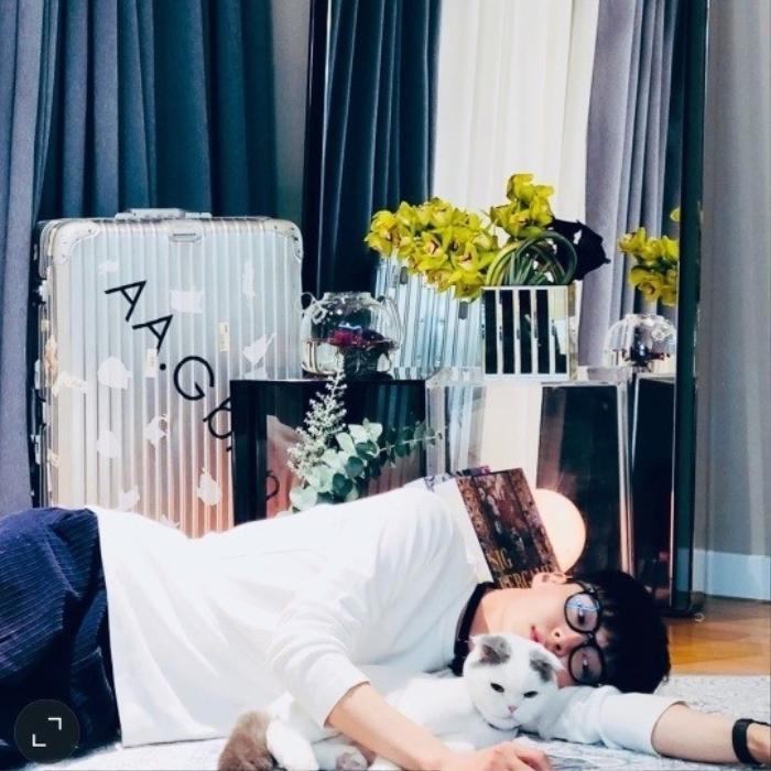 Song Hye Kyo khoe 'bạn nam' dịp Noel, Goo Hye Sun xuống tóc giống Sulli, Ahn Jae Hyun an yên bên mèo cưng Ảnh 4