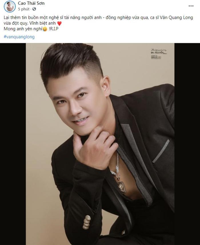 Lý Hải buồn bã tiễn đưa Vân Quang Long, Đàm Vĩnh Hưng tiếc nuối vì lời hứa chưa thể thực hiện Ảnh 2