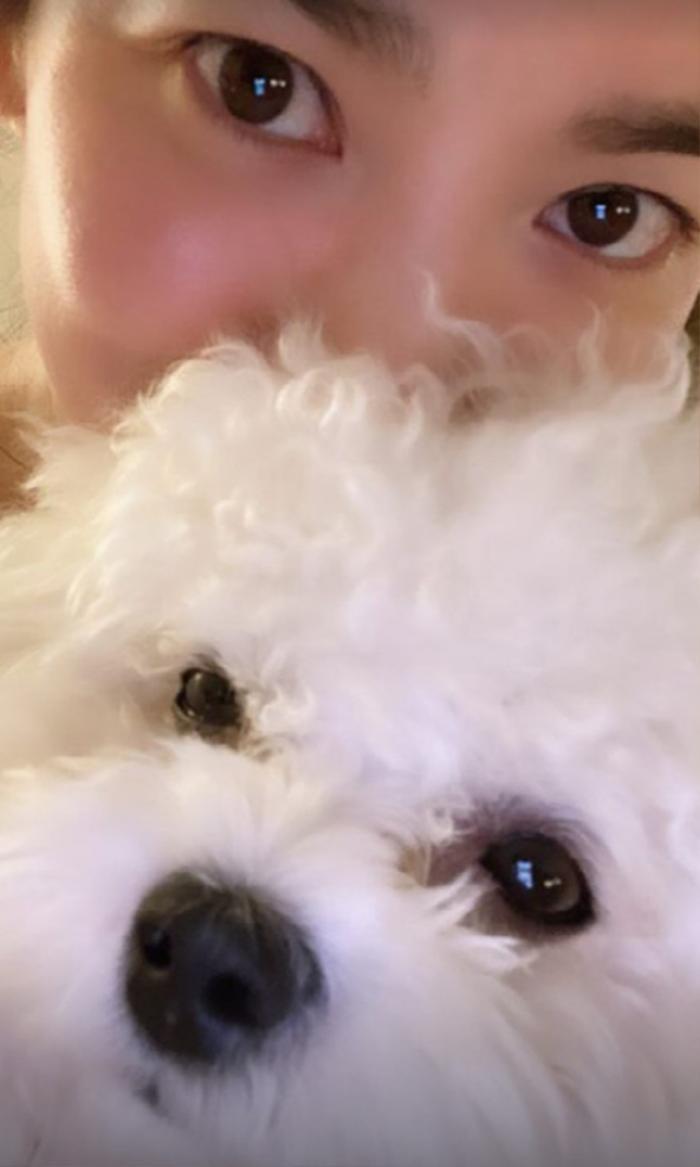 Lễ tình nhân 14/02: Song Joong Ki mở Instagram chính thức, Song Hye Kyo liền đăng ảnh 'dằn mặt'! Ảnh 5