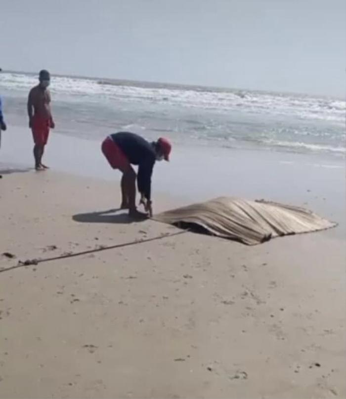 Du khách hốt hoảng phát hiện thi thể nam giới trôi dạt trên biển Vũng Tàu Ảnh 1