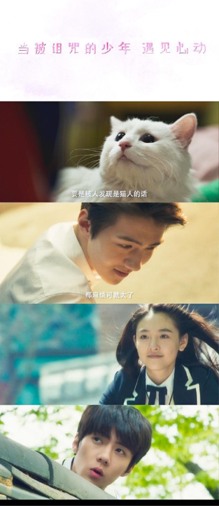 Sau thời gian dài 'đắp chiếu', cuối cùng phim điện ảnh của Sehun - Ngô Thiến cũng có cơ hội ra mắt? Ảnh 6