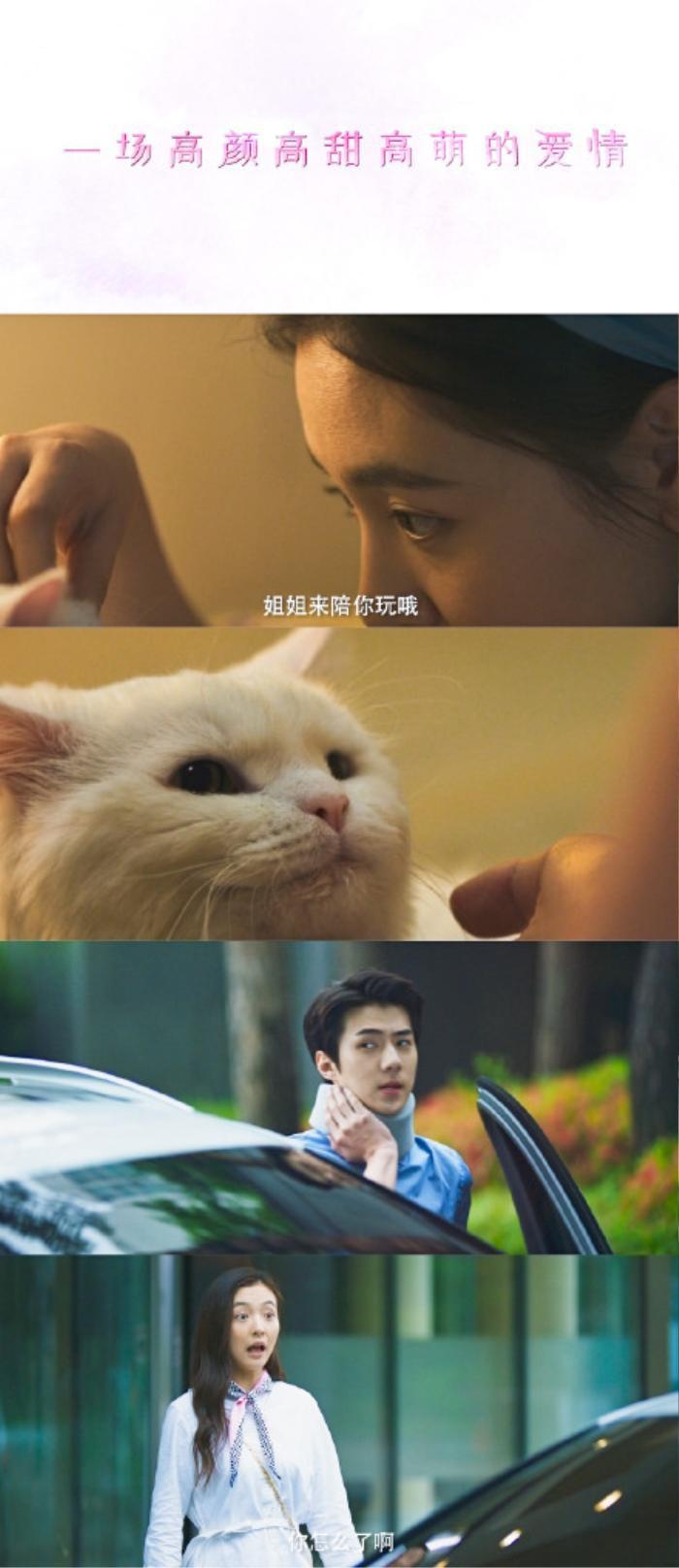 Sau thời gian dài 'đắp chiếu', cuối cùng phim điện ảnh của Sehun - Ngô Thiến cũng có cơ hội ra mắt? Ảnh 2