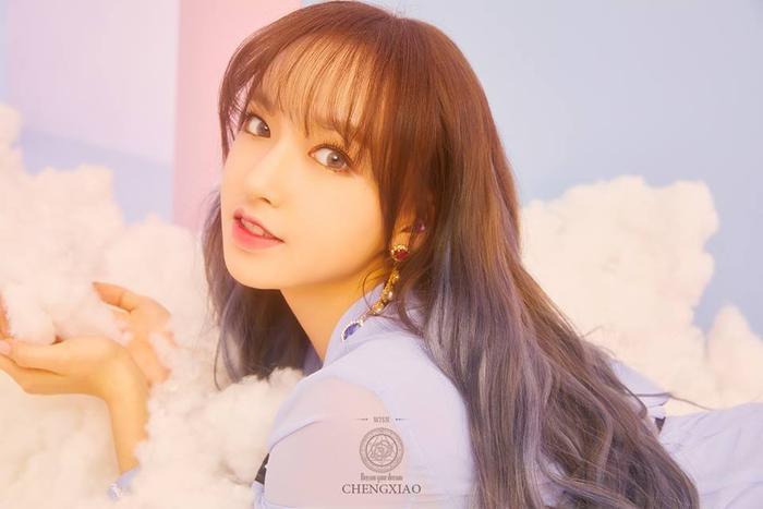 Những nữ idol Kpop kể từ khi sinh ra đã 'ngậm thìa vàng' Ảnh 5