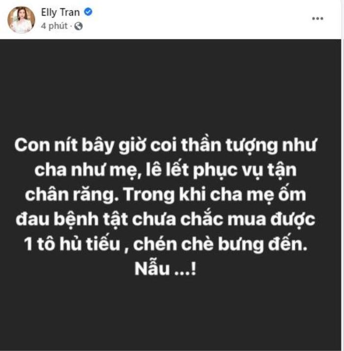 Elly Trần 'đáp trả' gay gắt khi bị nói 'không có fan nên thích tạo scandal' Ảnh 1