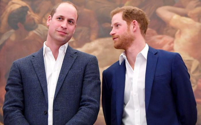 Hoàng gia tách hoàng tử William và Harry trong đám tang của Hoàng thân Philip Ảnh 2