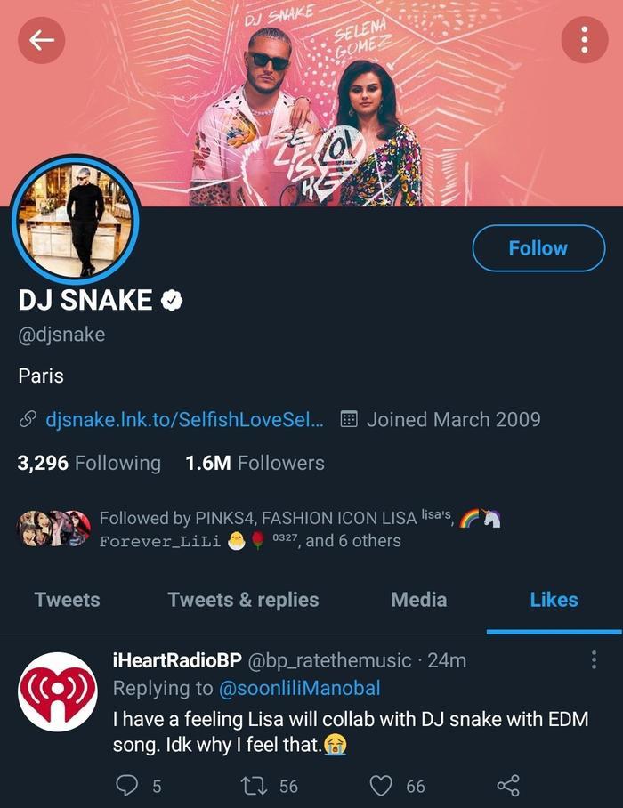 DJ Snake liên tục 'thả thính' collab cùng Lisa, Blink ngán ngẩm: 'Anh ta lại làm trò gì nữa đây' Ảnh 3