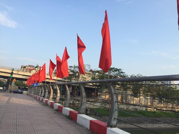Việt Nam trong tim ta: Rực rỡ cờ đỏ sao vàng trên từng mái nhà góc phố Ảnh 6