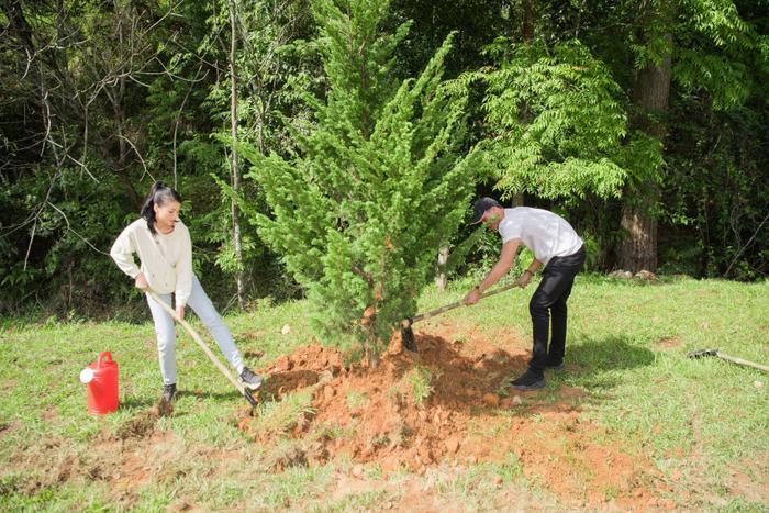 Phương Khánh 'mướt mồ hôi' cùng Ngọc Tình và dàn người đẹp Miss Earth trồng cây phủ xanh Ảnh 8