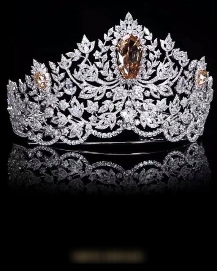 Tân Hoa hậu Hoàn Vũ 2020 diện váy lộ hết vòng 2 to tướng, đội vương miện thì bị chê Ảnh 7
