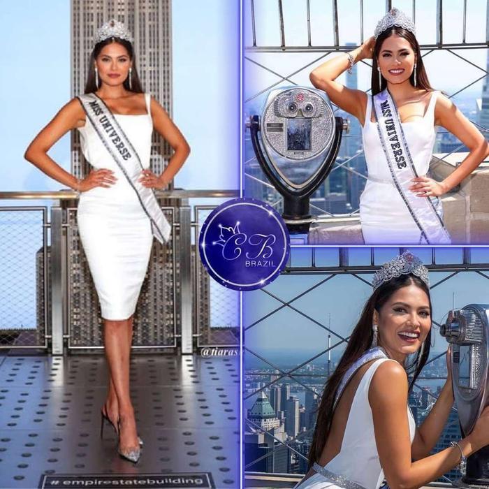 Tân Hoa hậu Hoàn Vũ 2020 diện váy lộ hết vòng 2 to tướng, đội vương miện thì bị chê Ảnh 6