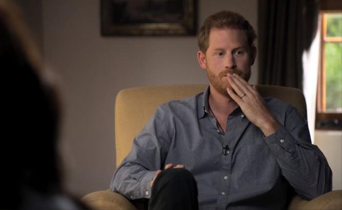 Harry tiếp tục kể khổ, công kích gia đình hoàng tộc trong phim tài liệu mới Ảnh 1
