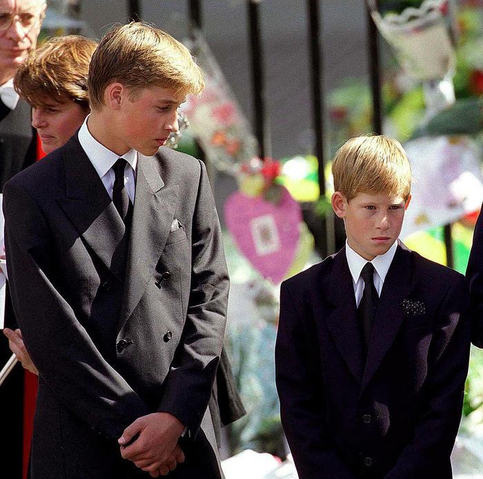 Cuộc gọi điện cuối cùng của William và Harry với mẹ, cố Công nương Diana khiến hai anh em mãi day dứt Ảnh 4