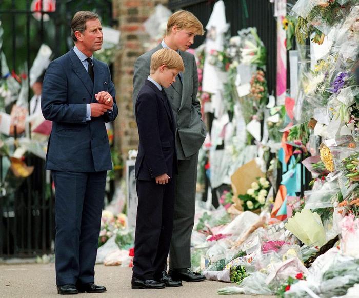 Cuộc gọi điện cuối cùng của William và Harry với mẹ, cố Công nương Diana khiến hai anh em mãi day dứt Ảnh 3