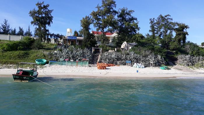 'Bóng hồng' duy nhất trên đảo Hòn Cau: Dành cả thanh xuân để đi theo dấu chân rùa biển Ảnh 1