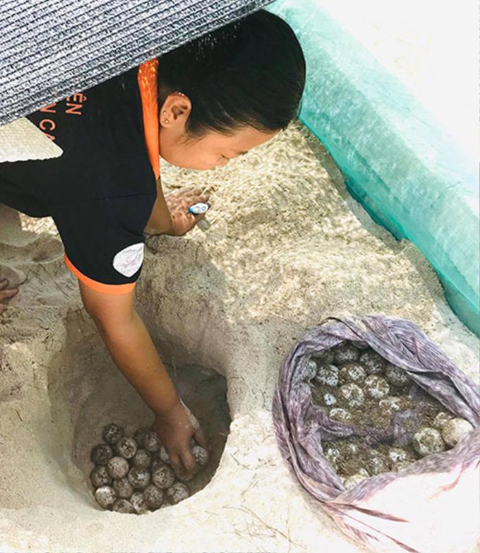'Bóng hồng' duy nhất trên đảo Hòn Cau: Dành cả thanh xuân để đi theo dấu chân rùa biển Ảnh 5