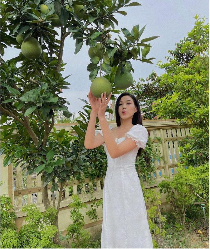 Hoa hậu Đỗ Thị Hà đi hái bưởi ở vườn nhà mà diện váy trắng xinh hết nấc Ảnh 2
