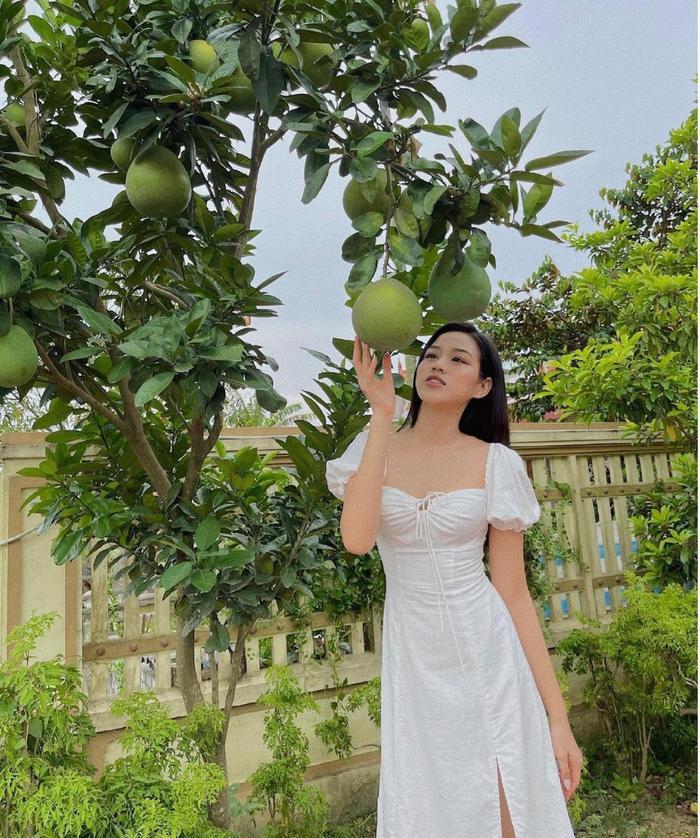 Hoa hậu Đỗ Thị Hà đi hái bưởi ở vườn nhà mà diện váy trắng xinh hết nấc Ảnh 1