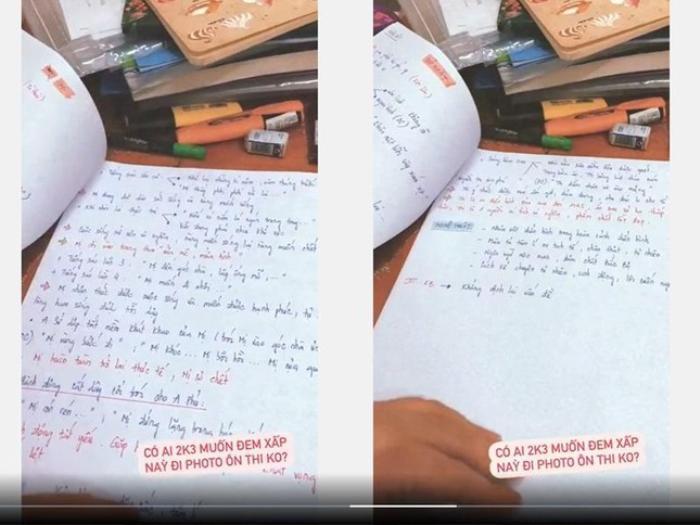 Phương Mỹ Chi khoe tập đề cương ôn tập môn Ngữ Văn tự viết tay khiến dân tình xuýt xoa khen ngợi Ảnh 1